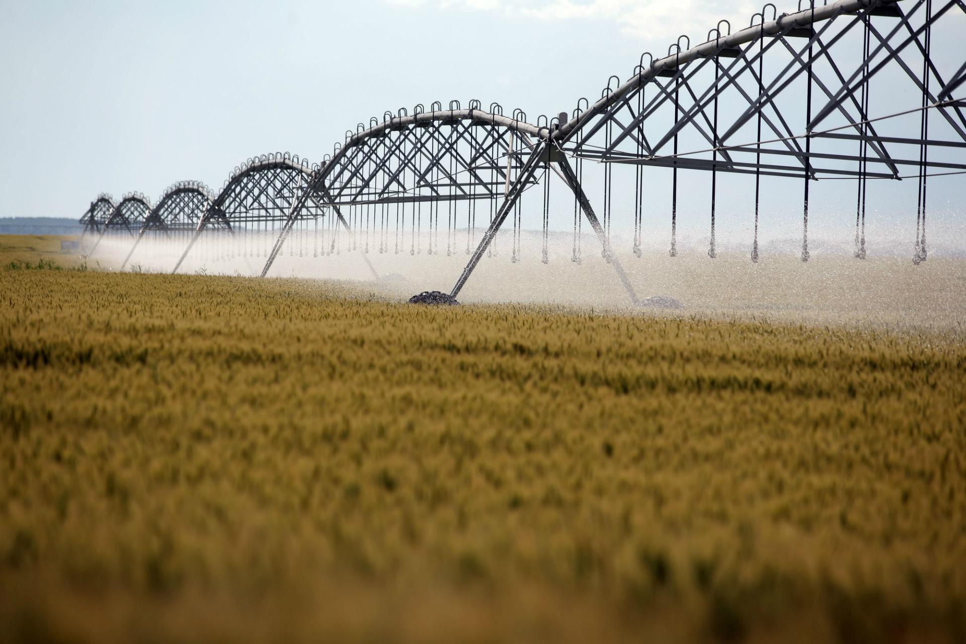 inwestycja rolnicza
